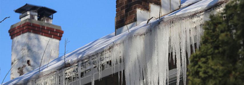 Canalones Congelados
