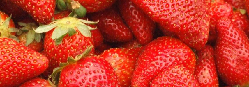 Cómo Plantar Fresas En Canalones