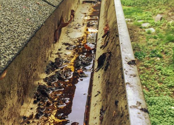 Agua sucia y estancada en una canaleta de recogida de agua