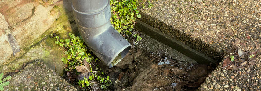 Bajante De Canalón Pluvial Obstruida